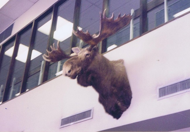 フェアバンクス空港 001