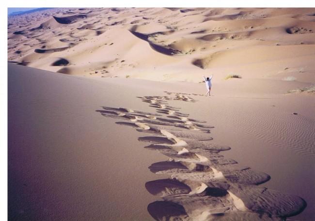 ナミビア砂漠3