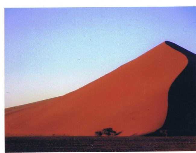ナビミア フォトジェニックなナミブ砂漠