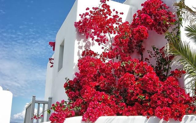 ミコノス島 画像